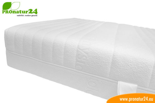 PHYSIOLOGA standard mattress