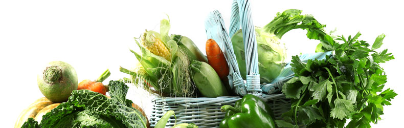 BIO fruits and BIO vegetables provide the body with alkalis. But what is truly BIO?