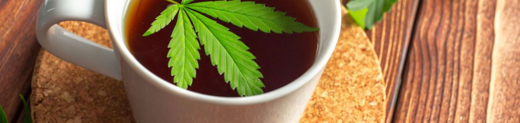 The power of cannabis plant in a delicious tea. Healthy hemp tea without THC on CBDprime!