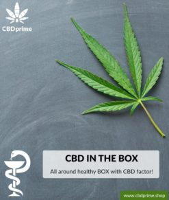 All around healthy BOX with CBD factor. Exclusive to CBDprime!